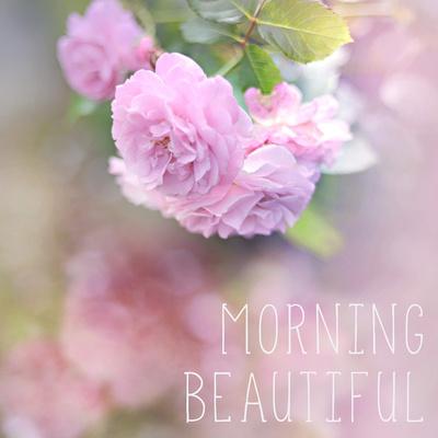 Morning Beautiful Prints by Sarah Gardner