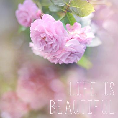 Life is Beautiful Art by Sarah Gardner