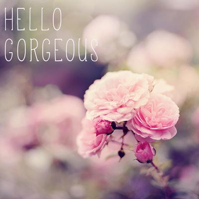 Hello Gorgeous Poster by Sarah Gardner