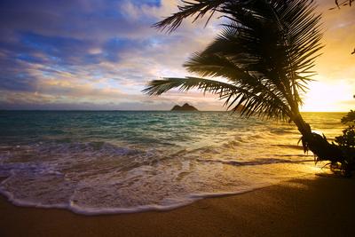 Sunrise at Lanikai Beach in Hawaii Photographic Print by  tomasfoto