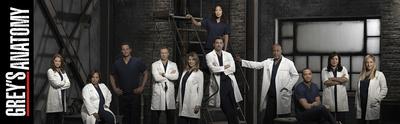 Grey's Anatomy Stampa