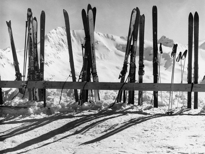 Skis Leaning Against a Fence in the Snow Fotoprint av Dusan Stanimirovitch