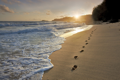 Footprints Photographic Print by Dennis Frates