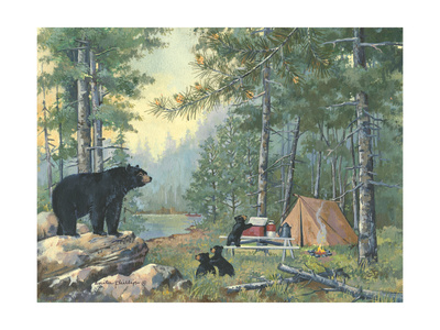 Bears Campsite Poster by Anita Phillips