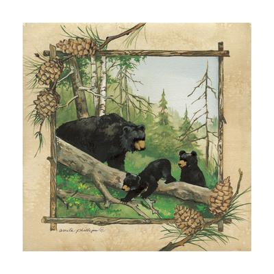 Black Bears IV Poster by Anita Phillips