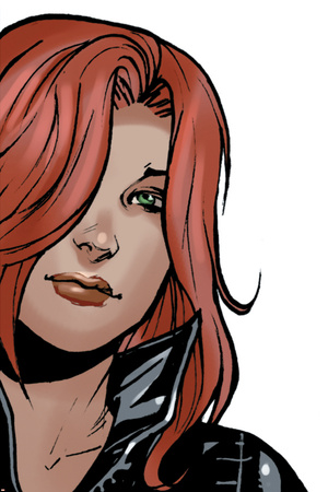 Avengers Assemble Style Guide: Black Widow Print