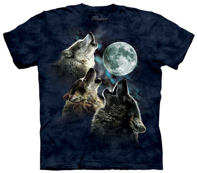 Youth: 3 Wolf Moon In Blue Shirts