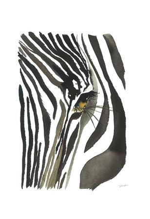 Zebra Eye Prints by Jessica Durrant