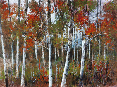 Silver Birches III Giclee Print by Richard Akerman