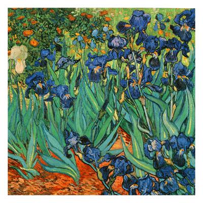 Iris (Détail) Posters by Vincent van Gogh