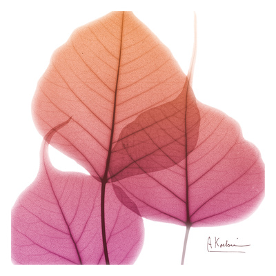 Bo Tree Art by Albert Koetsier