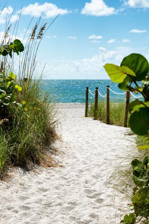 Boardwalk on the Beach - Miami - Florida Fotografisk tryk af Philippe Hugonnard