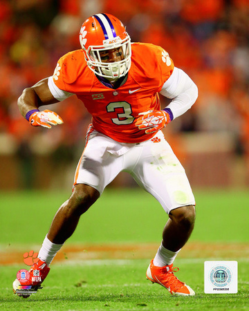 Vic Beasley Clemson University Tigers 2013 Action Photo