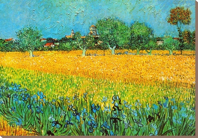 View of Arles with Irises Stretched Canvas Print by Vincent van Gogh