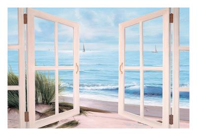 Sandpiper Beach Door Prints by Diane Romanello