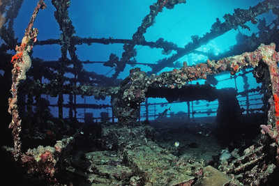 Scuba Diver Diving on Umbria Shipwreck, Sudan, Africa, Red Sea, Wingate Reef Photographic Print by Reinhard Dirscherl