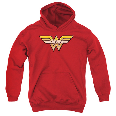 Youth Hoodie: Justice League - Golden Pullover Hoodie