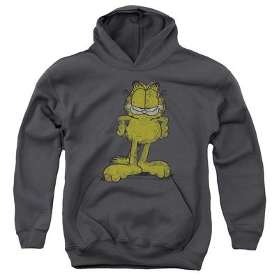 Youth Hoodie: Garfield - Big Ol' Cat Pullover Hoodie