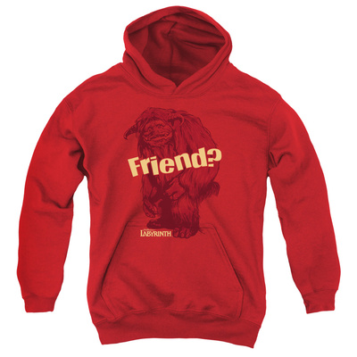 Youth Hoodie: Labyrinth - Ludo Friend Pullover Hoodie