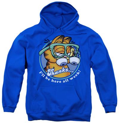Youth Hoodie: Garfield - Performing Pullover Hoodie