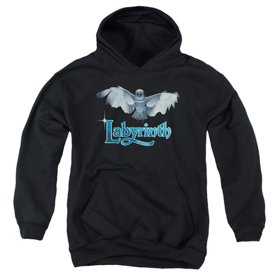 Youth Hoodie: Labyrinth - Title Sequence Pullover Hoodie