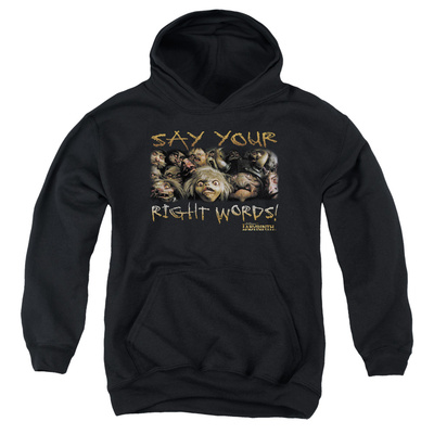 Youth Hoodie: Labyrinth - Say Your Right Words Pullover Hoodie