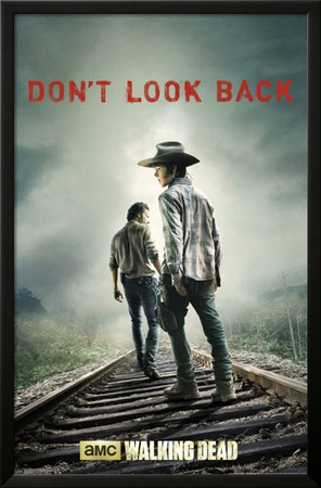 The Walking Dead - Don't Look Back Poster