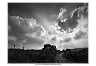 Lonely Path I Prints by Martin Henson