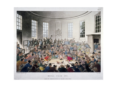 Royal Cock Pit, 1808 Giclee Print by Augustus Charles Pugin