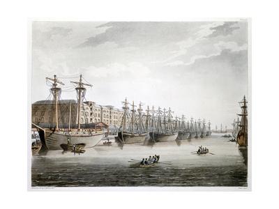 West India Docks, London, 1808-1810 Giclee Print by Augustus Charles Pugin