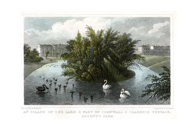Island on the Lake and Part of Cornwall and Clarence Terraces, Regent's Park, London, 1828 Giclee Print by William Tombleson