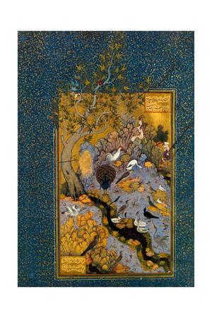 Folio from Mantiq Al-Tayr (The Language of the Bird) by Attar, Ca. 1600 Giclee Print by Habib Allah