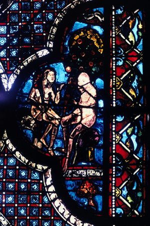 Adam and Eve, Stained Glass, Chartres Cathedral, France, 1205-1215 Photographic Print
