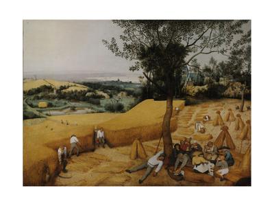 The Harvesters, 1565 Giclee Print by Pieter Bruegel the Elder