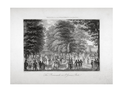 The Promenade in St James's Park, Westminster, London, 1804 Giclee Print by Edward Pugh