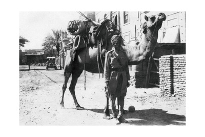 Indian Camel Trooper, Baghdad, 1918 Giclee Print