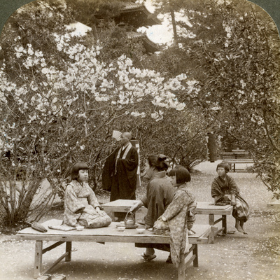 A Family Enjoying a Picnic under the Cherry Blossoms, Omuro Gosho, Kyoto, Japan, 1904 Photographic Print by  Underwood & Underwood