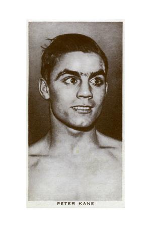 Peter Kane, British Boxer, 1938 Giclee Print