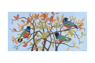 Suberb Starlings of East Africa, 2015 Giclee Print by Megan Moore