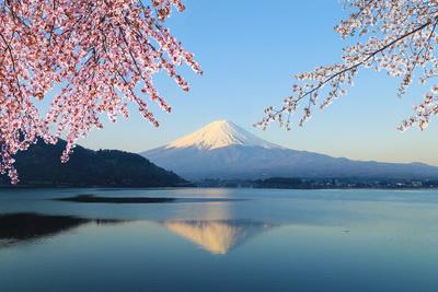 Mount Fuji, View from Lake Kawaguchiko Photographic Print by  geargodz