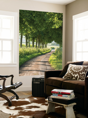 Tree Lined Country Lane, Dorset, England. Summer (July) Wall Mural by Adam Burton