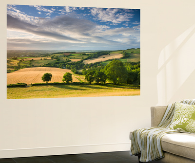 Beautiful Sky Above Summer Countryside, Raddon Hill, Crediton, Devon, England. Summer Wall Mural by Adam Burton