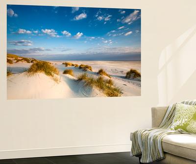 Dunes, Amrum Island, Northern Frisia, Schleswig-Holstein, Germany Wall Mural by Sabine Lubenow