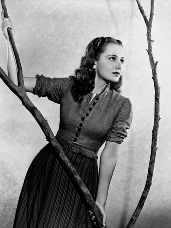 Olivia De Havilland Photographic Print