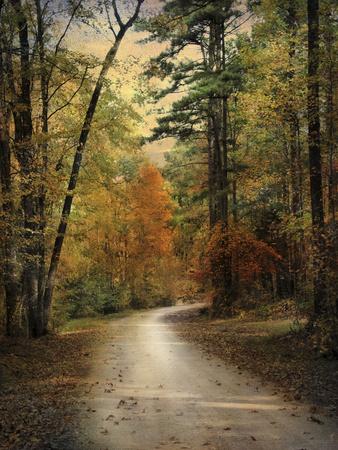 Autumn Forest 4 Lámina fotográfica por Jai Johnson