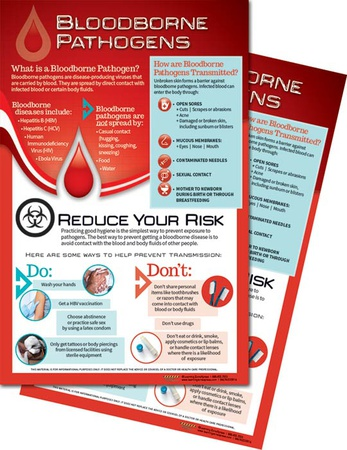 Bloodborne Pathogens Posters Print