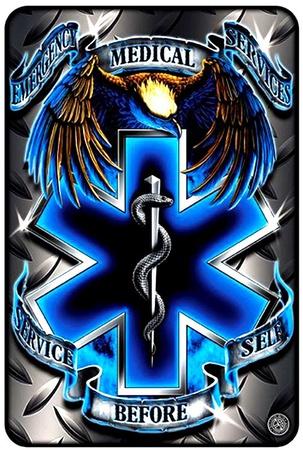 EMS Eagle Tin Sign