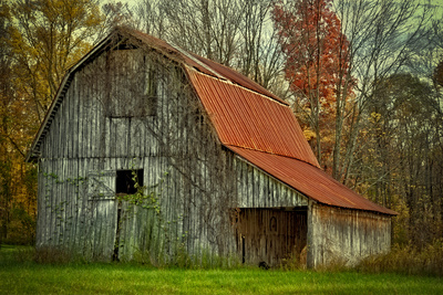 USA, Indiana. Rural Landscape, Vine Covered Barn with Red Roof Photographic Print by Rona Schwarz