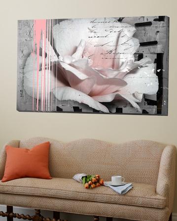 Pink Rose Prints by Micha Baker