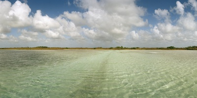 The Crystal Clear Water of an Ancient Maya Canal in Sian Ka'An Biosphere Reserve Photographic Print by Macduff Everton